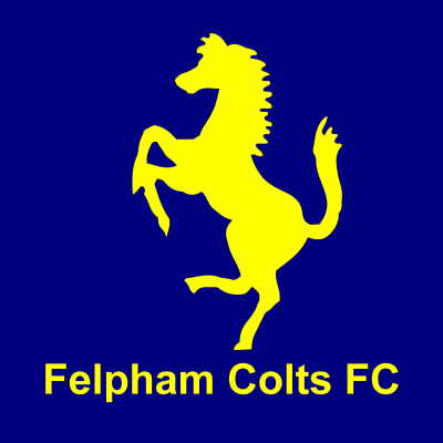 felpham-blog-logo